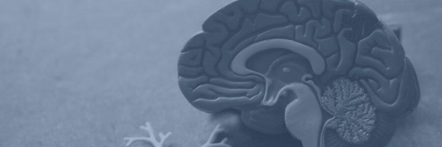Refleksdystrofi – når et lille traume fører til den store smerte